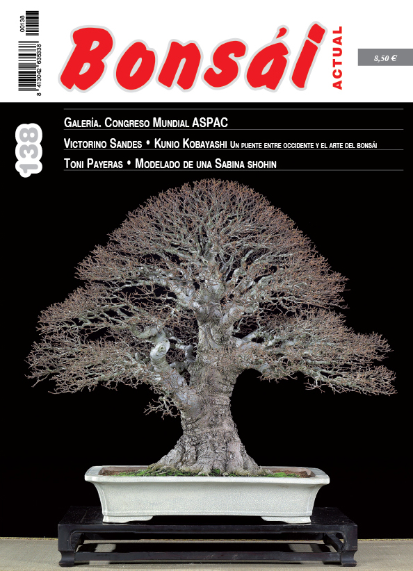 Portada de la revista Bonsai Actual 138